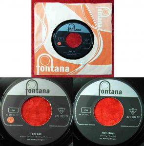 Single Rooftop Singers: Tom Cat (Fontana 271 702 TF) D