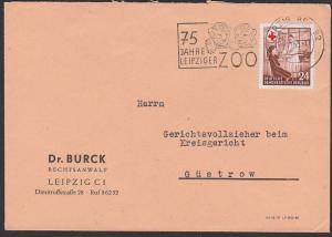 croix rouge Leipzig Zoo Löwen MWSt. Leo, DDR 385 24 Pfg. Rotes Kreuz red cross nach Güstrow 7.11.53