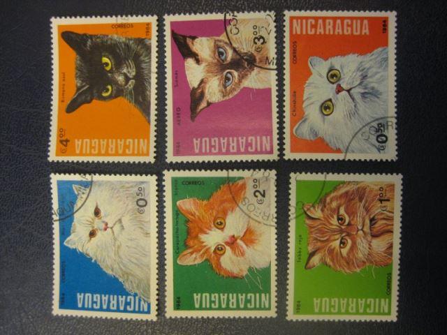 Katzen, 6 Werte, Nicaragua