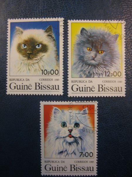 Katzen, 3 Werte, Guinea-Bissau