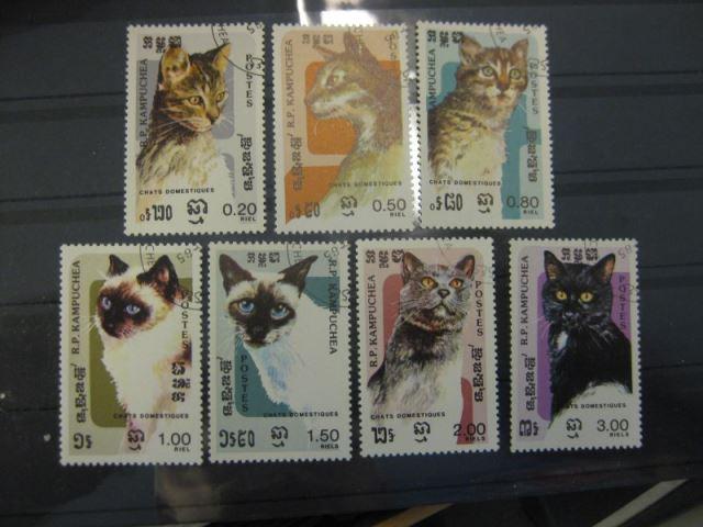 Katzen, Kambodscha,7  Werte