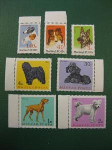 Hunde, 7 Werte, Ungarn