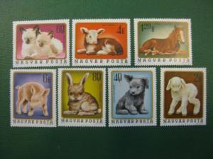 Hund, Katze, Pferd, Lamm,. Schwein, Hase, Kalb, 7 Werte, Ungarn