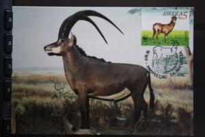 Angola, WWF-MK 1990; Antilopen