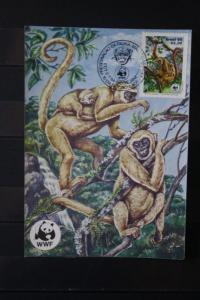 Brasilien, WWF-Ausgabe auf MK 1984