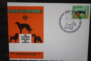 DDR Rassehunde, Rassehundeausstellung Erfurt, Hunde, 1977
