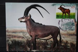 Angola, Antilope, WWF, 1990, Maximumkarte