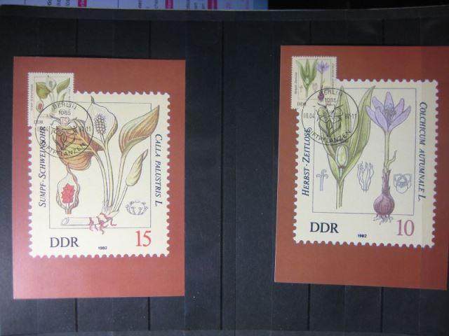 Giftpflanzen, Set von 6 amtl. MK, 1982, mit PF 0