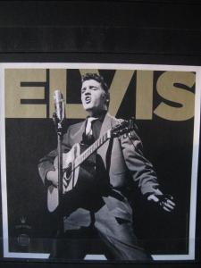 USA, Kleinbogen: Elvis Presley, 2015