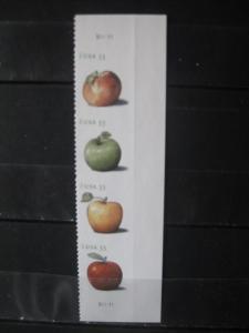 USA, Zusammendruck: Obst, Äpfel, 2013