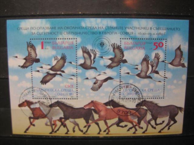 Bulgarien, Europa Symphatieausgabe, Block 1989