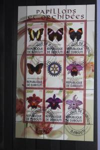 Djibuti, Schmetterlinge, Orchiden, 2010