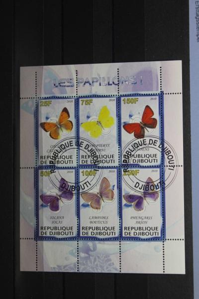 Djibuti, Schmetterlinge, 2010