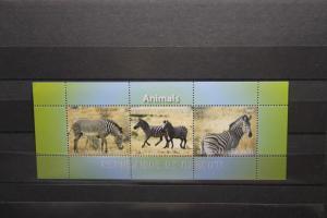 Djibuti, Zebras, 2011