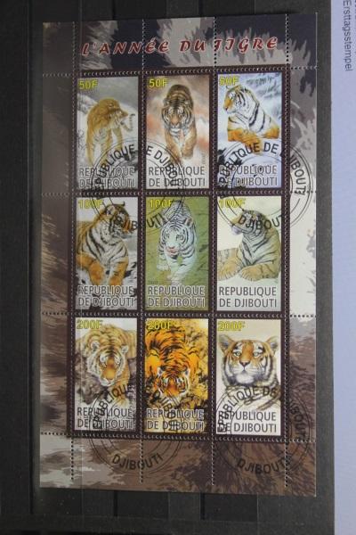 Djibuti, Tiger, 2010