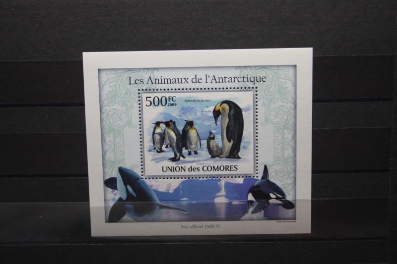 Komoren, Pinguine, 2009