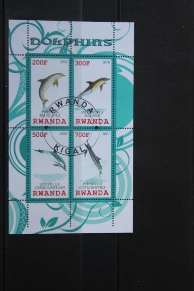 Rwanda, Delfine, 2010