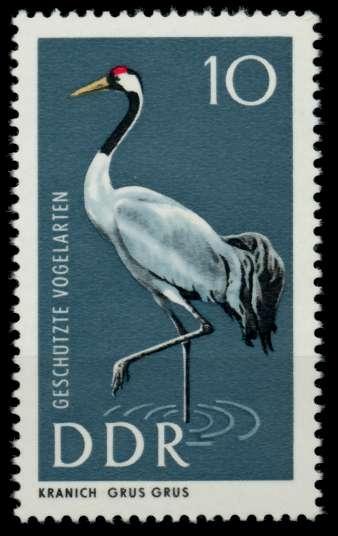 DDR 1967 Nr 1273 postfrisch SFE72BA 0