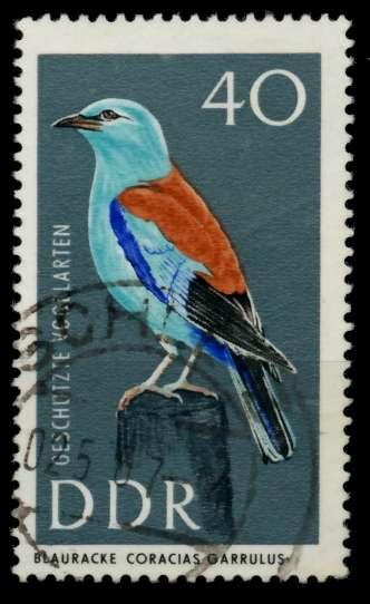 DDR 1967 Nr 1277 gestempelt 90B066 0