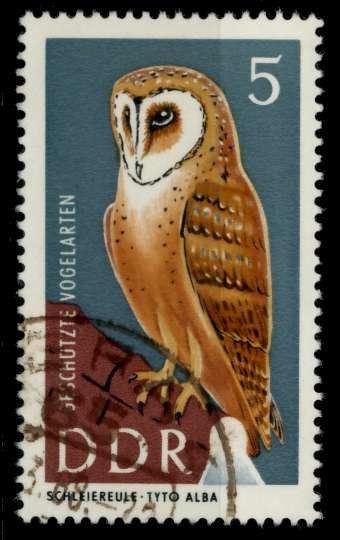 DDR 1967 Nr 1272 gestempelt 90B09E 0