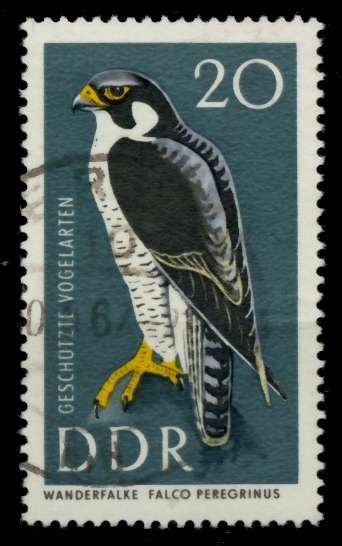 DDR 1967 Nr 1274 gestempelt 90B12E 0