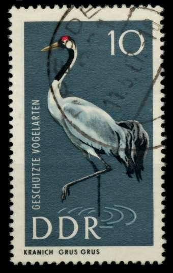 DDR 1967 Nr 1273 gestempelt 90B156 0