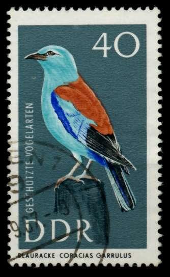 DDR 1967 Nr 1277 gestempelt 90B15E 0