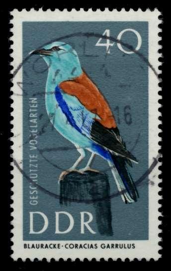 DDR 1967 Nr 1277 zentrisch gestempelt 90B24A 0