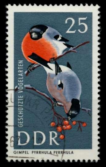 DDR 1967 Nr 1275 gestempelt 90B24E 0