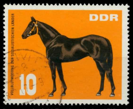DDR 1967 Nr 1303 gestempelt 90B2D6 0