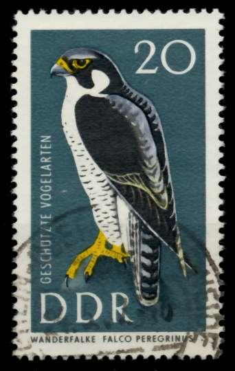 DDR 1967 Nr 1274 gestempelt 90B32E 0