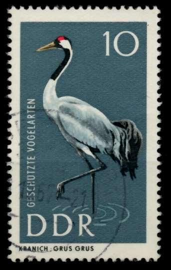 DDR 1967 Nr 1273 gestempelt 90B36A 0