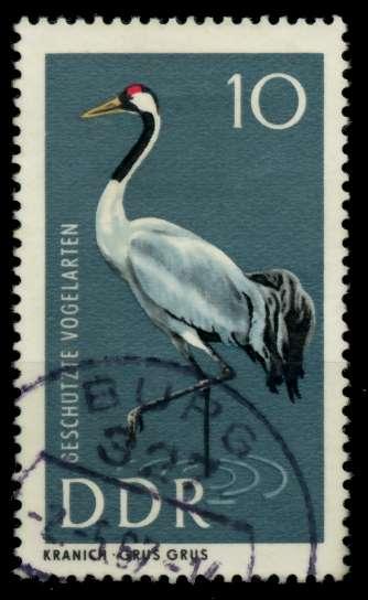 DDR 1967 Nr 1273 gestempelt 90B39E 0