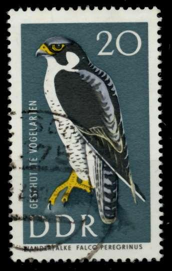 DDR 1967 Nr 1274 gestempelt 90B45A 0