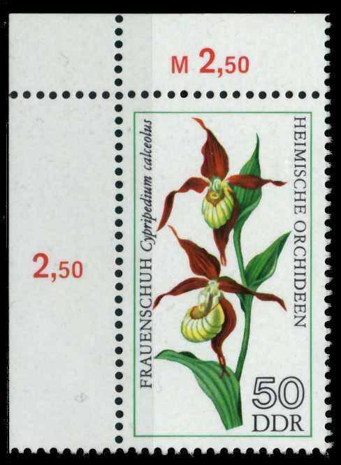 DDR 1976 Nr 2140 postfrisch ECKE-OLI 69F8BA