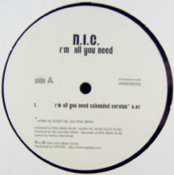 12inch - N.I.C. I'm All You Need