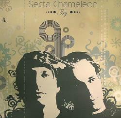 12inch - Secta Chameleon Try