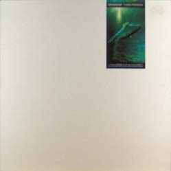 12inch - Madcap Third Person