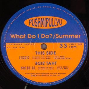 12inch - Pushmipullyu What Do I Do? / Summer