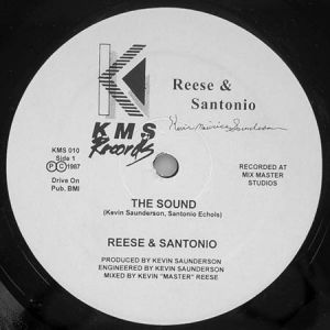 12inch - Reese & Santonio The Sound / How To Play Our Music
