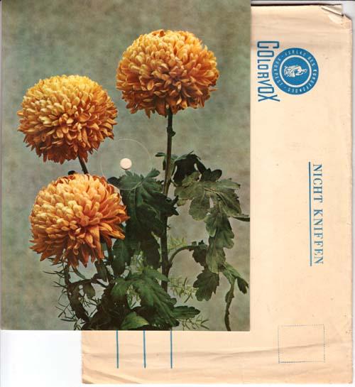 7inch - Postcard Einmal, Zweimal, Dreimal Hoch