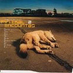 2LP - Various Artists Fyzikal Encountas 2