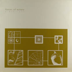 12inch - Forces Of Nature Dimensions