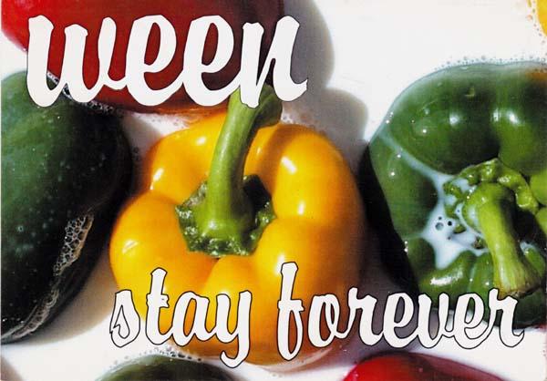 Memorabilia - Ween Stay Forever - Postcard