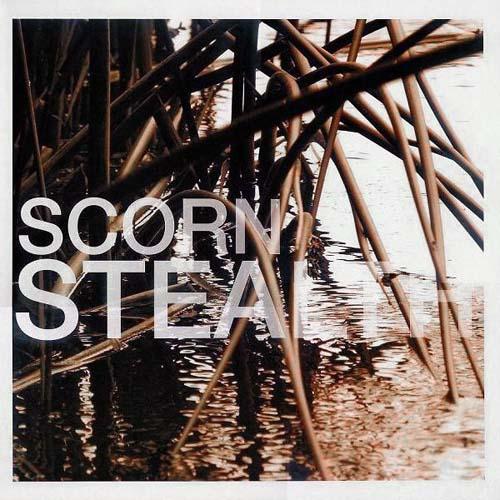 2x12inch - Scorn Stealth