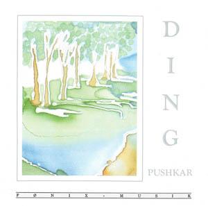 CD - Pushkar Ding