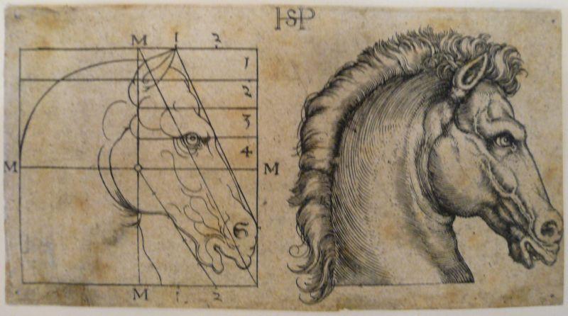 Beham, Hans Sebald (1500 Nürnberg - 1550 Frankfurt am  Main),, Zwei Pferdeköpfe. Kupferstich 0
