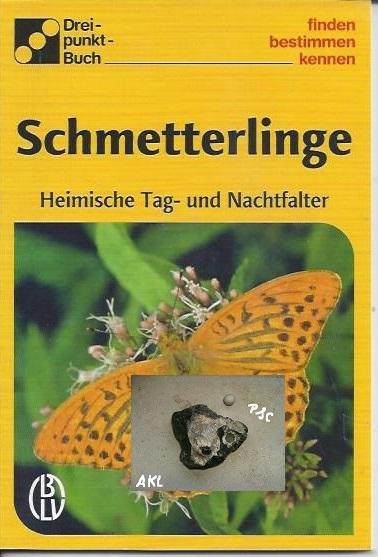 Schmetterlinge, bestimmen, finden, kennen, Dreipunkt