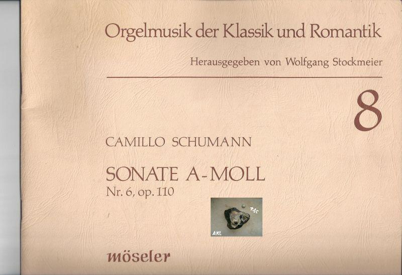 Orgelmusik der Klassik und Romantik, Wolfgang Stockmeier, 8