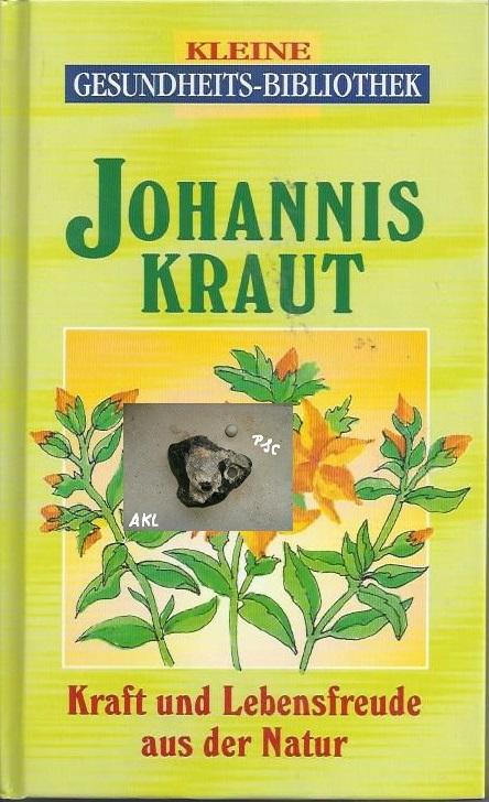 Johanniskraut, Kraft und Lebensfreude aus der Natur